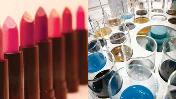 Química e Derivados, FCE Cosmetique, FCE