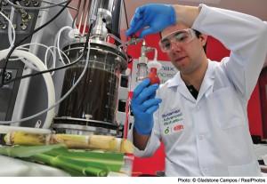 Química e Derivados, Biocombustíveis - Laboratório estuda produção de butanol de cana em Paulínia