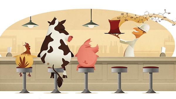 Química e Derivados, Nutrição Animal