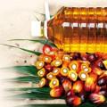 Oleoquímica: Faltam materiais graxos no país para desenvolver produção competitiva