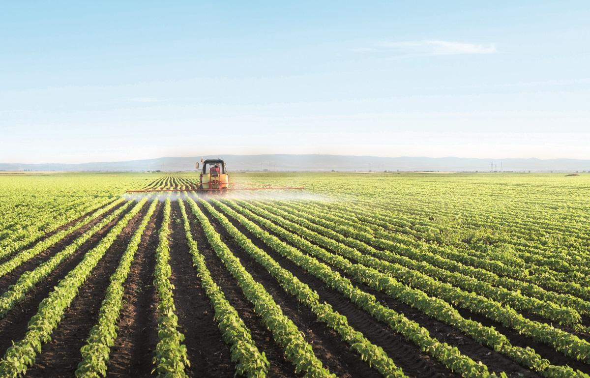 Química e Derivados, Agroquímicos: Safra recorde anima, mas entraves regulatórios freiam avanço tecnológico